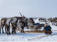 О проведении Всероссийского конкурса фототворчества «Наследники традиций: народы России»