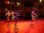 Международный фестиваль–конкурс циркового искусства