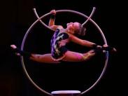 Подведены итоги Международного фестиваля–конкурса циркового искусства «Золотое сечение»