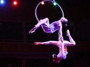 О проведении I Дальневосточного фестиваля циркового искусства